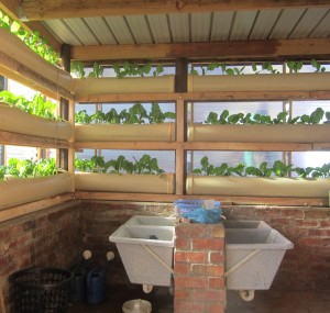 The new wash room and vertical gardens at Langrug